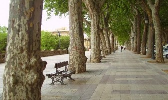 Regidoria Parcs i Jardins Xativa